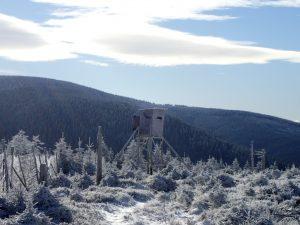 wintertocht Polen